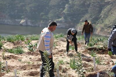 Livelihood - King Talal Dam - Um Qais
