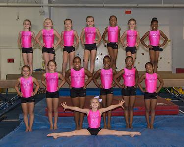 Gymstars 2014 Team Shots