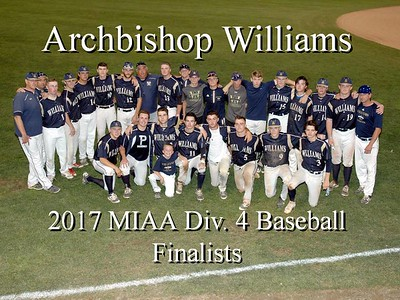 2017 MIAA State Baseball Finals