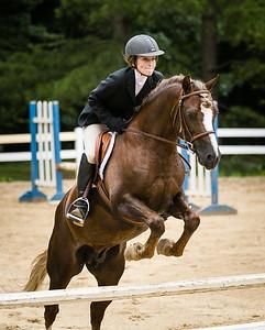 SAMPLE-Equestrian