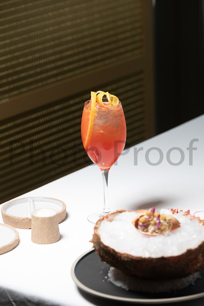 BIRDSONG Schweppes Cocktails 021.jpg