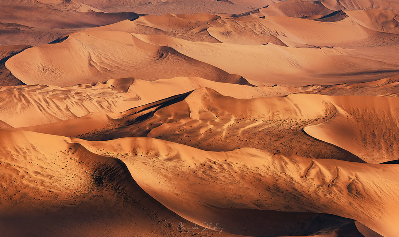 The Waves of Namib