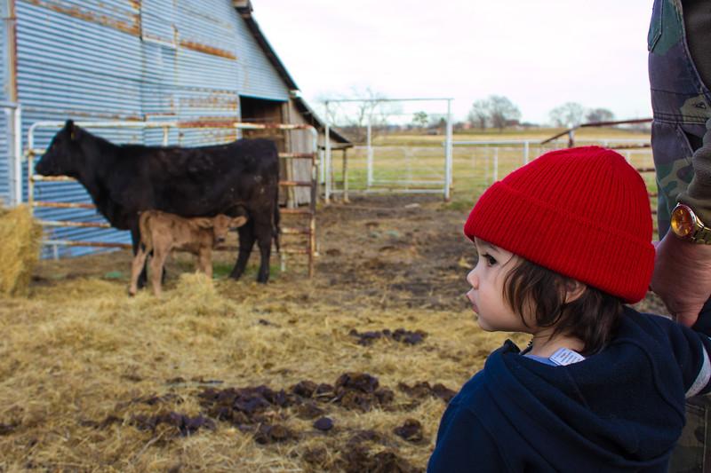 140817, Red hat LPFfam.jpg
