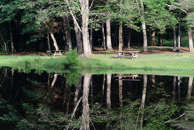 Stratton Brook: Reflections_June 21, 2017