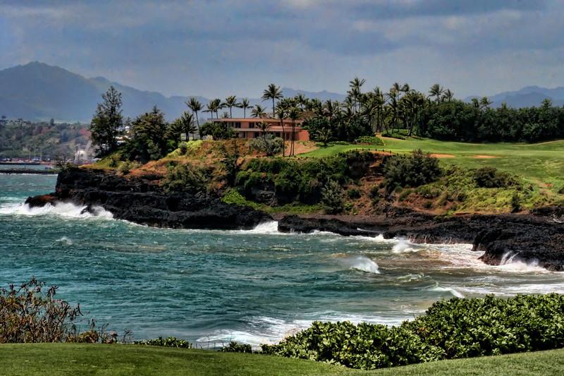 Hawaii Golf.jpg