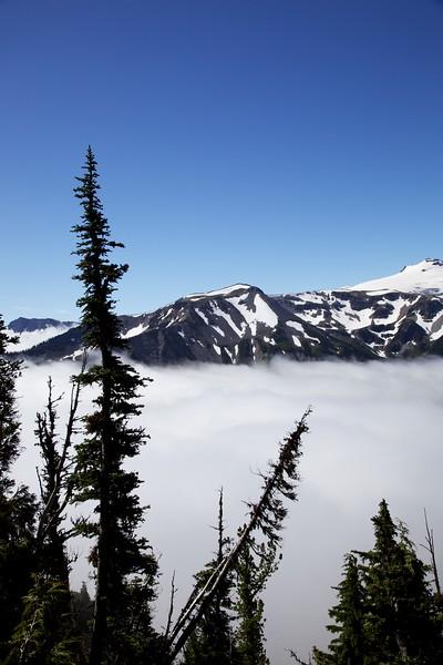 Low clouds in valley. Mt. Rainier National Park, Washington