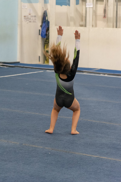 Brianna Gymnastics-0508.jpg