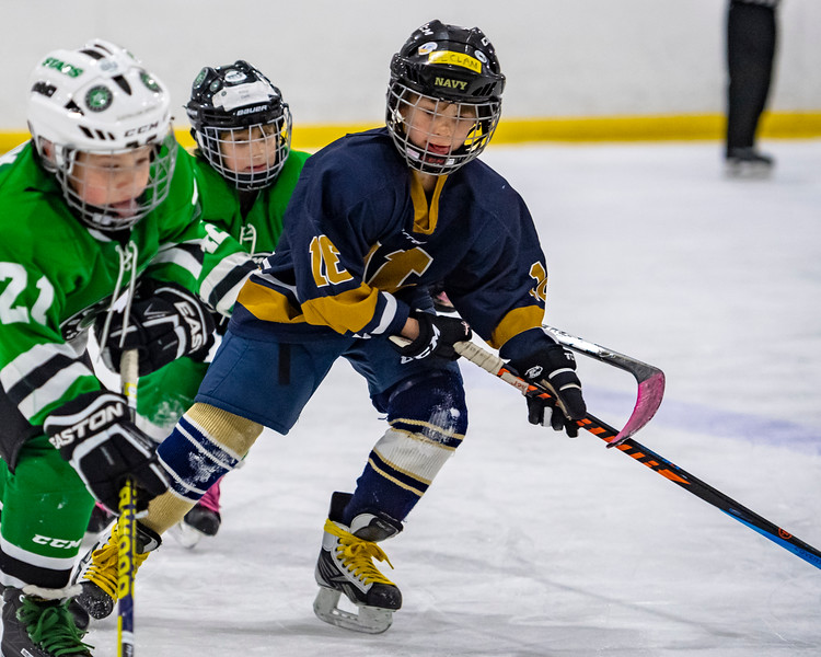 2019-02-03-Ryan-Naughton-Hockey-37.jpg