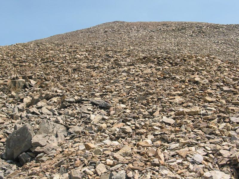 Mount Dana (49).jpg