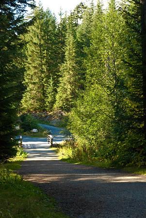 Whistler Landscapes