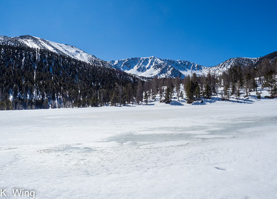 Hike to Dry Lake in the San Gorgonio Wilderness 2.1.20