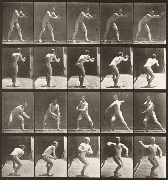 Nude man catching and throwing baseball (Animal Locomotion, 1887, plate 282)