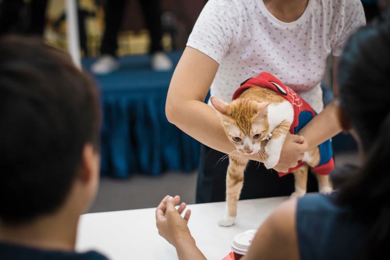 VividSnaps-The-Seletar-Mall-CAT-Dress-Up-Contest-213.jpg