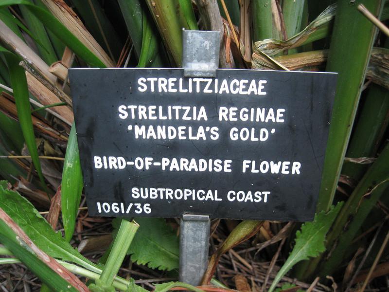 2011 South Africa 689.jpg