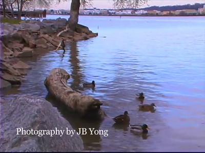 Wedding Videography New Jersey New York DC