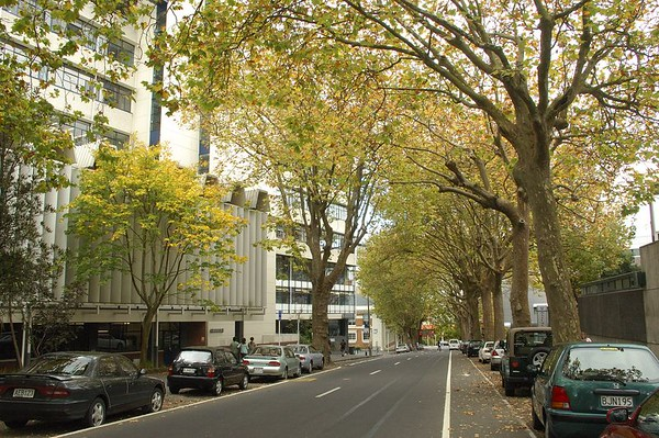Fall 2005 - Auckland