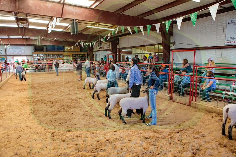 Bi-County Fair 9-1-2017
