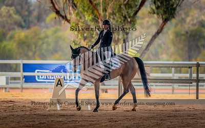 Dressage  1* and 1.5*