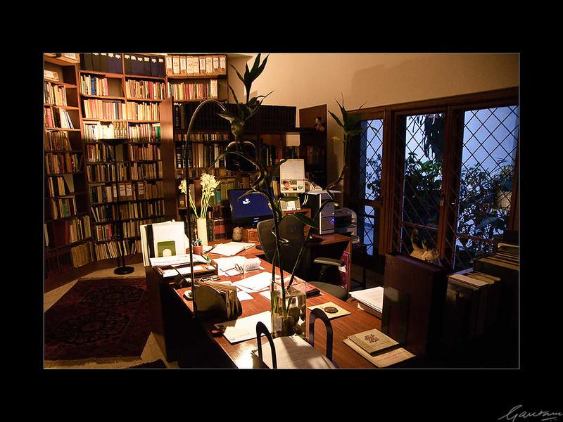 01: Romila Thapar's residence, New Delhi | Romila Thapar's residence, New Delhi 26 February 2010 NIKON D90; 18-200 mm f/3.5-5.6; Center-weighted average; 1/25 sec at f/3.5; ISO-2000;