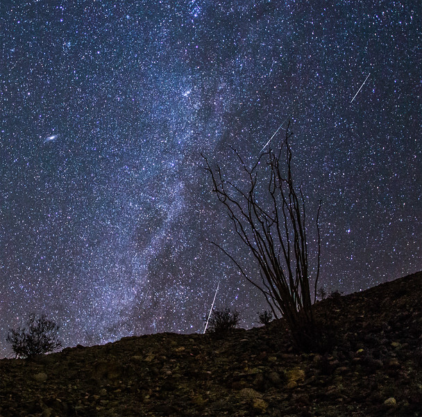 Geminids, Ocotillo, Milky Way, and Andromeda galaxy