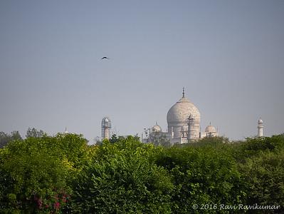 Agra 2016