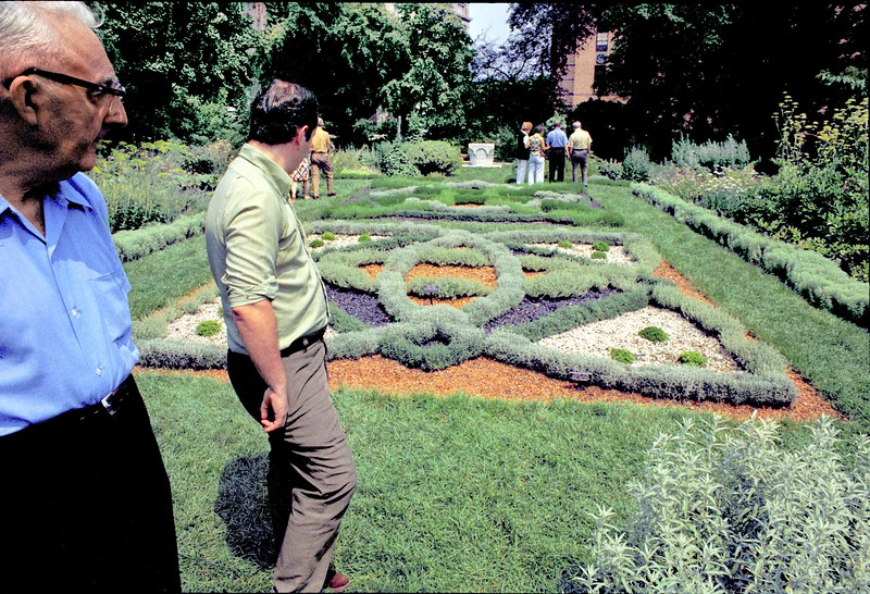 The medieval knot garden.