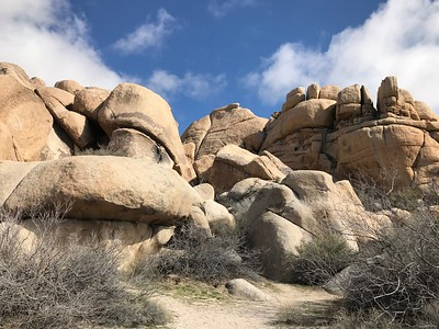 2/19/2017~2/20/2017 Joshua Tree Backpacking2