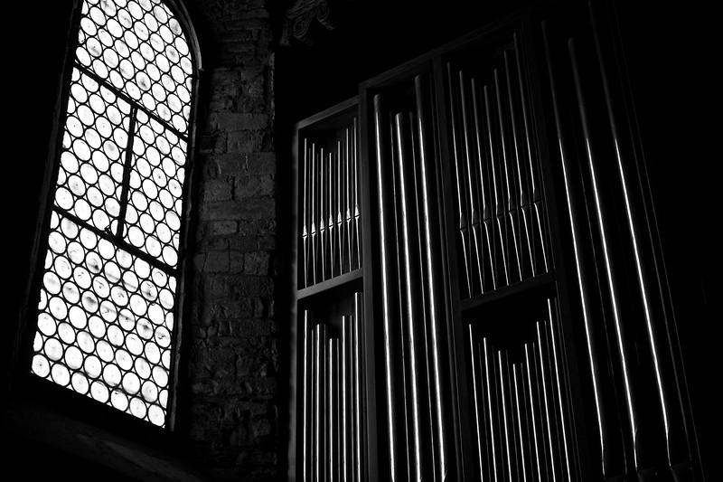 Organ Light