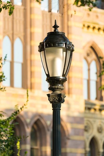Yale University-18.jpg