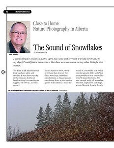 The Sound of Snowflakes
