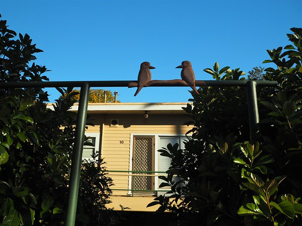 Decorative kookaburra figures perched on an entry to a yellow home