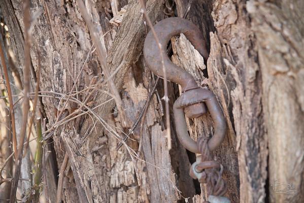 9.1 Old Locust Grove
