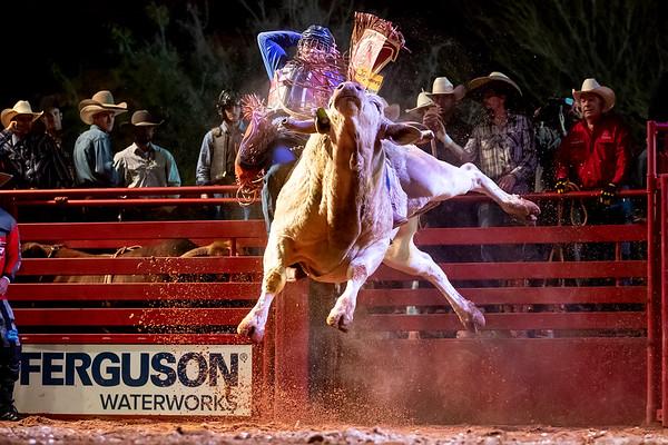Rodeo & Bull Riding
