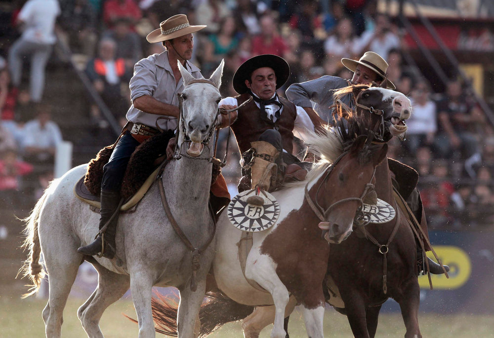 ". A gaucho is helped by others to unseat  an unbroken horse during the annual celebration of Criolla Week in Montevideo, March 25, 2013. Throughout Easter Week ""gauchos\"", the Latin American equivalent of the North American \""cowboy\"", from all over Uruguay and neighboring Argentina and Brazil visit Montevideo to participate in Criolla Week to win the award of best rider. The competition is held March 24 - March 30. REUTERS/Andres Stapff"