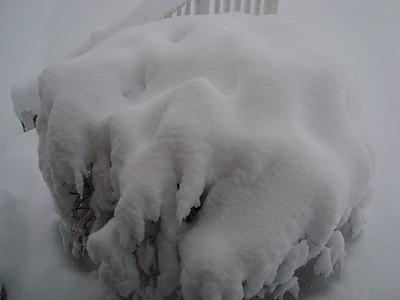 Snowfall - Feb. 5-6, 2010