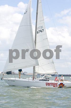 """Varmit""- Sail # 16747"