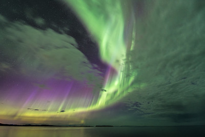 Aurora Borealis (The Northern Lights)