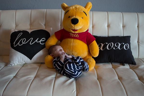 Zedd Newborn UNedited
