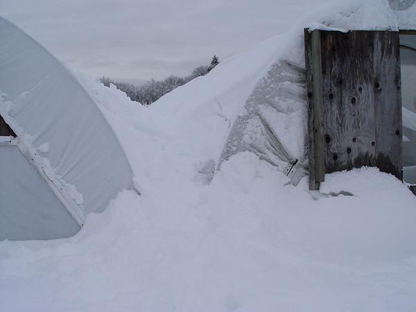 A 40 year snow storm - December 2008