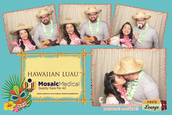 Mosaic Medical 2019
