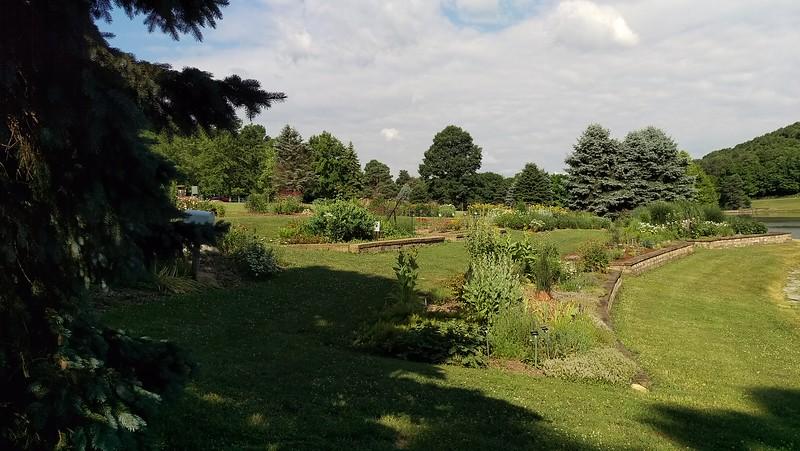 Garden in Mid-summer
