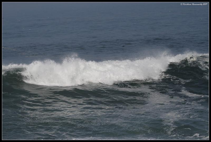 High tide at La Jolla, La Jolla Cove, San Diego County, California, November 2009