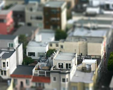 San Francisco Miniature