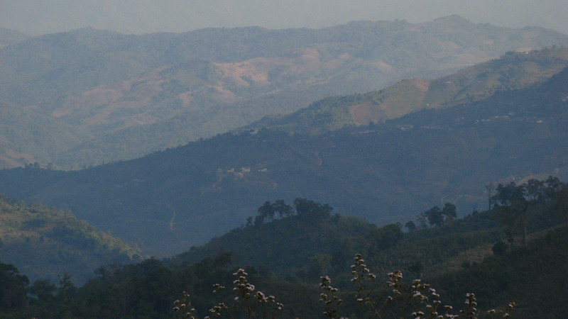 Doi Mae Salong in the distance and Baan Sam Soong (Ahka) on the left