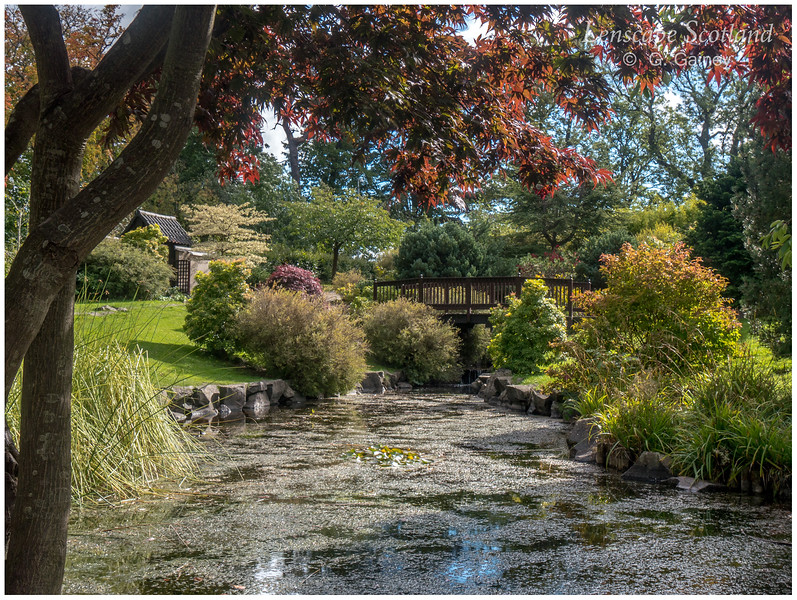 Edinburgh Kyoto Friendship Garden, Lauriston Castle (2)