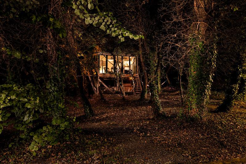 treehouse night 02.jpg