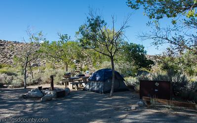 Lone Pine Camp