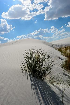 20160805 White Sands