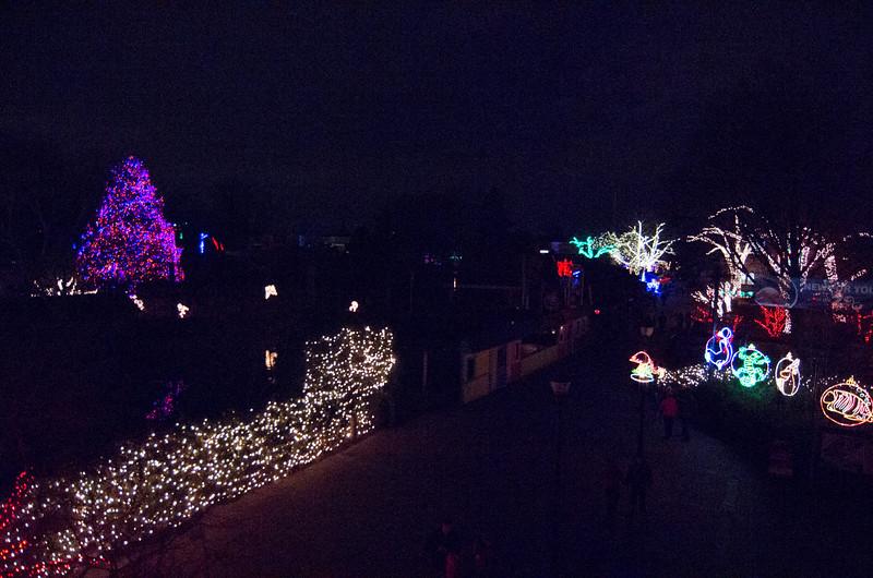 Toledo Zoo Light Show - 2014 - _CAI4506.jpg