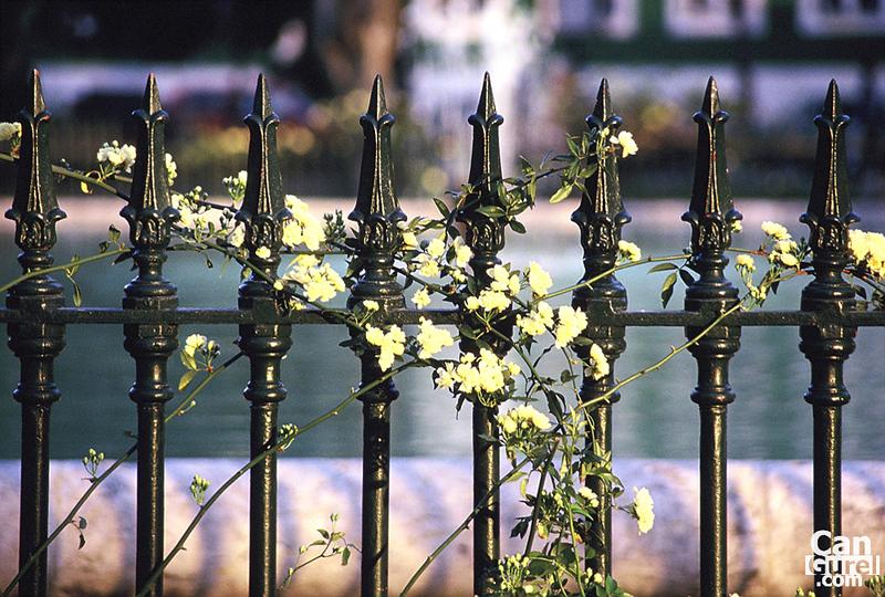 000034_bc_um_lisbon_fence.jpg